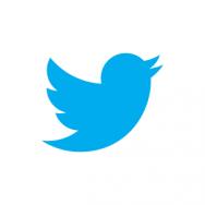 Twitter: ese gran desconocido